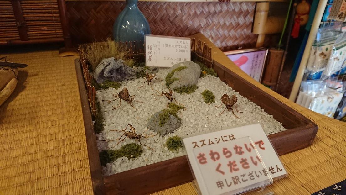 写真:竹人形の里 時代屋